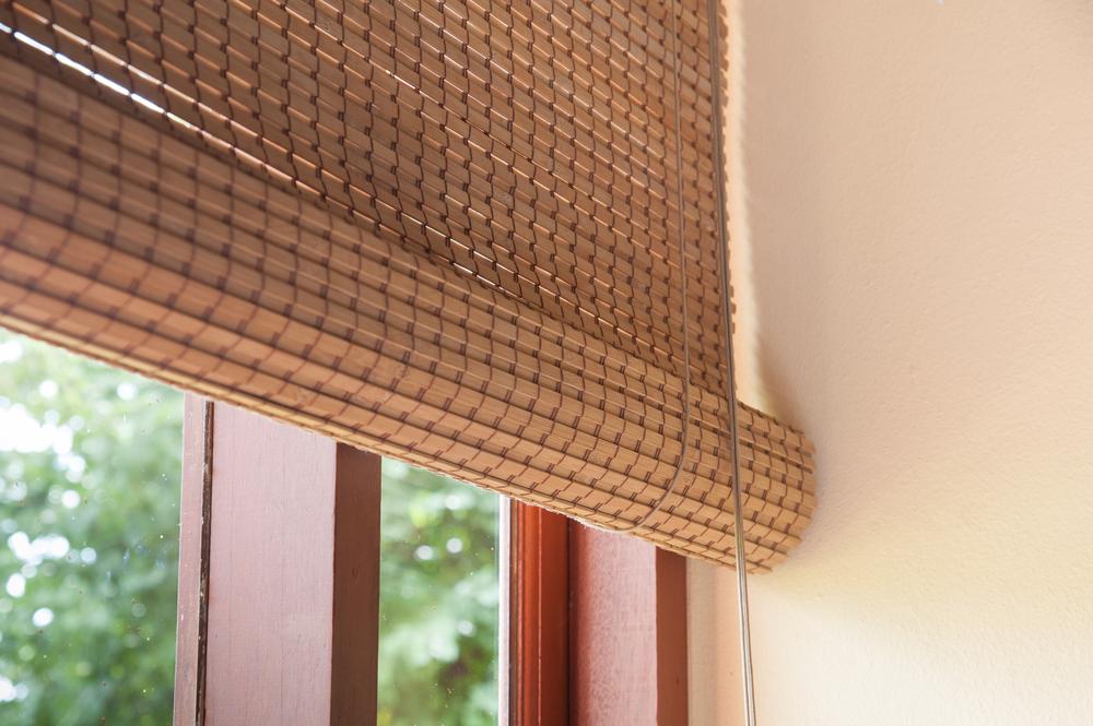 A bambuszról és tulajdonságairól bővebben