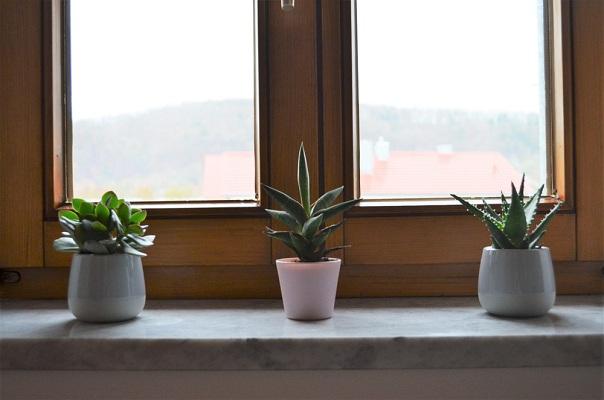 Az ablakpárkány nemcsak a cserepes virágok tárolására alkalmas!